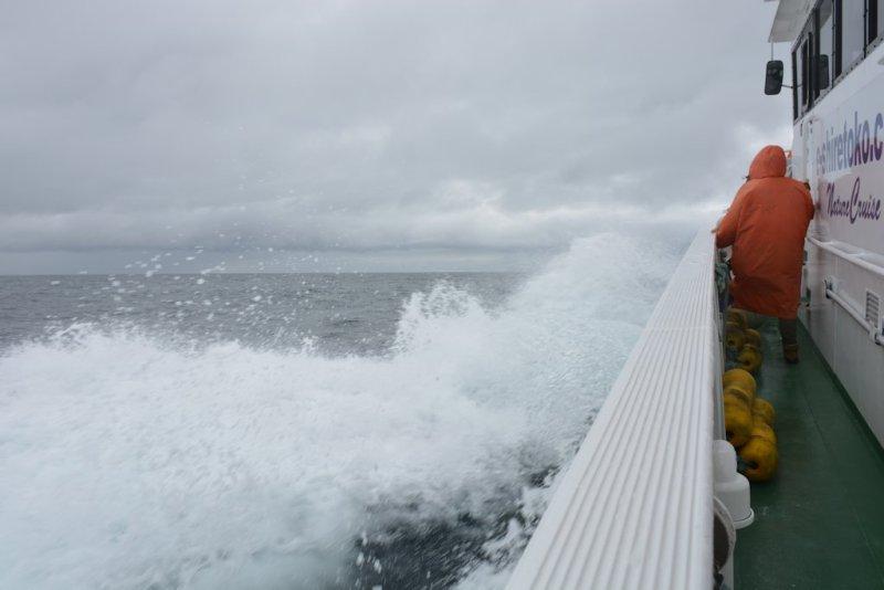 """7th day around Japan """"Hokkaido"""" Rausu Nature Cruise"""
