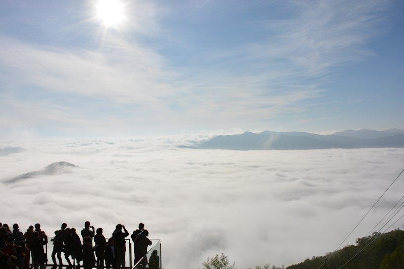 日本一周12日目 【北海道】雲海テラスと青い池