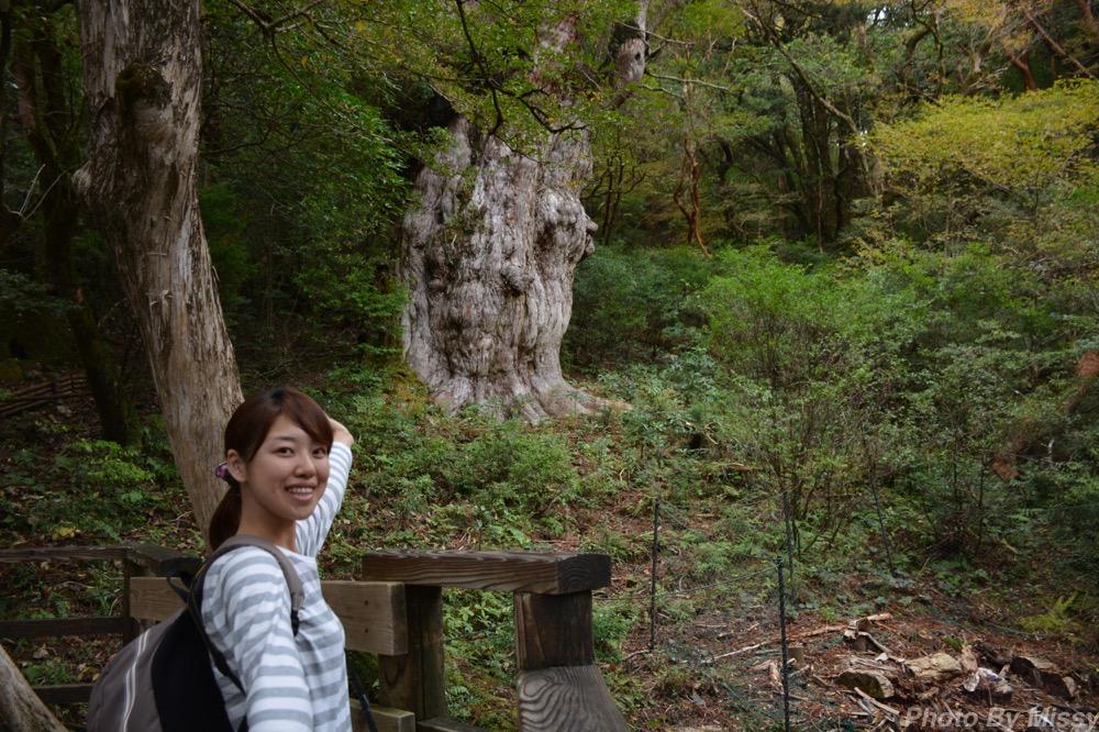 日本一周50日目 【屋久島】世界遺産 縄文杉へ