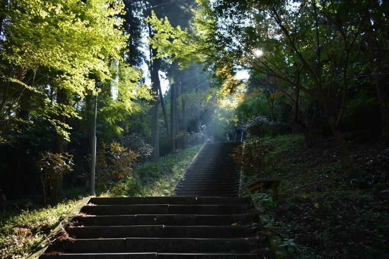 日本一周44日目【熊本】3,333段の石段(釈迦院御坂遊歩道)を登る