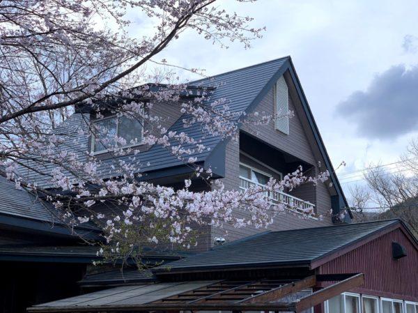 桜のある別荘
